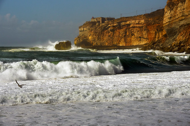The Surf at Nazare - Portugal
