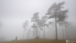 Leith Hill | by Colin_Evans