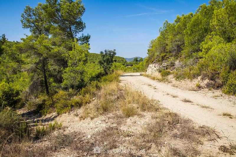 Camino a Viladellops desde Les Carreteres