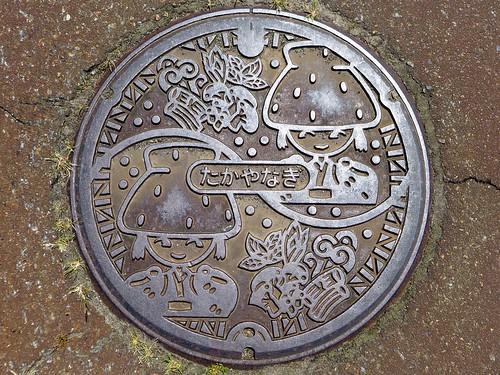 新潟県高柳町のマンホール