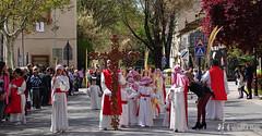 procesion-domingo-de-ramos-tomelloso-la-borriquilla-6