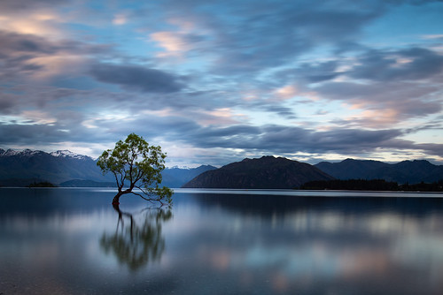new zealand nz that wanaka tree nd long exposure neutral density tripod nikkor 20mm nikon golden hour sunset twilight clouds sky lake sea water mountains mountain landscape composition light serene wanderlust