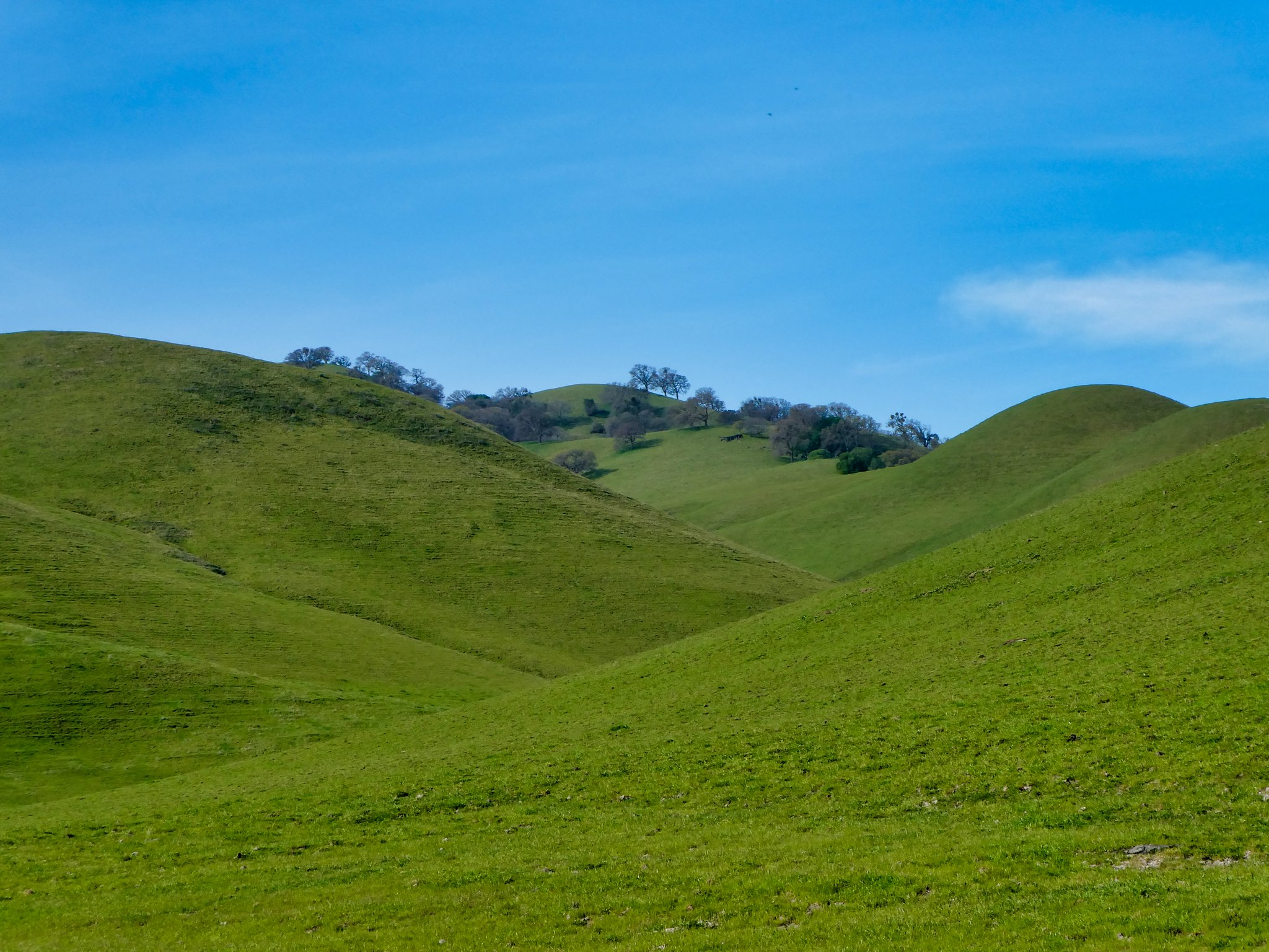 2019-03-17 - Landscape Photography - Nature - Black Diamond Mines Regional Preserve