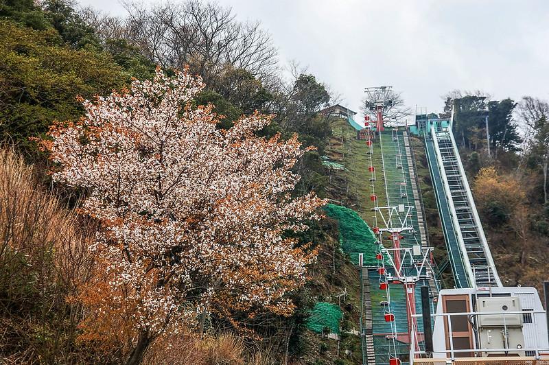 山頂公園纜車 1