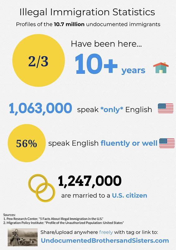 illegal immigration statistics infographic