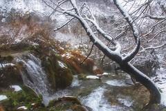 Winter Love