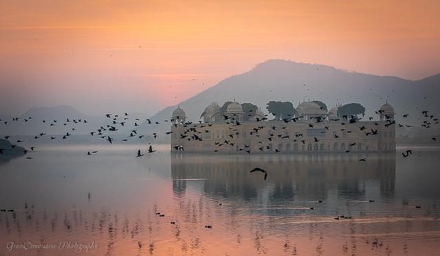 Man Sagar Lake, a bird sanctuary, at sunrise. Shape of Jal Mahal Palace emerging from the mist. Jaipur. Rajasthan.