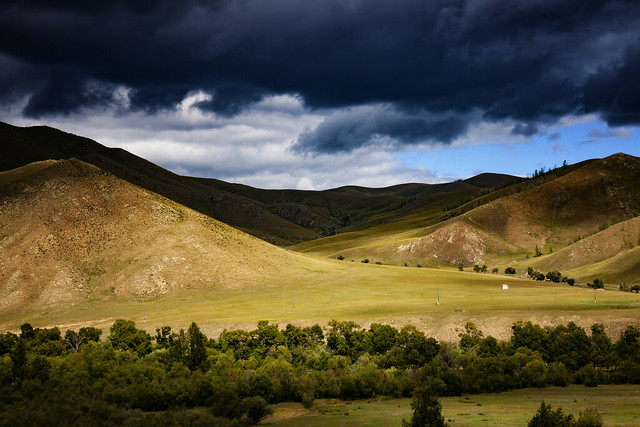 A Mongolian Scene