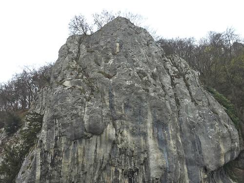10 - Felswand - Donaufahrt zum Kloster Weltenburg