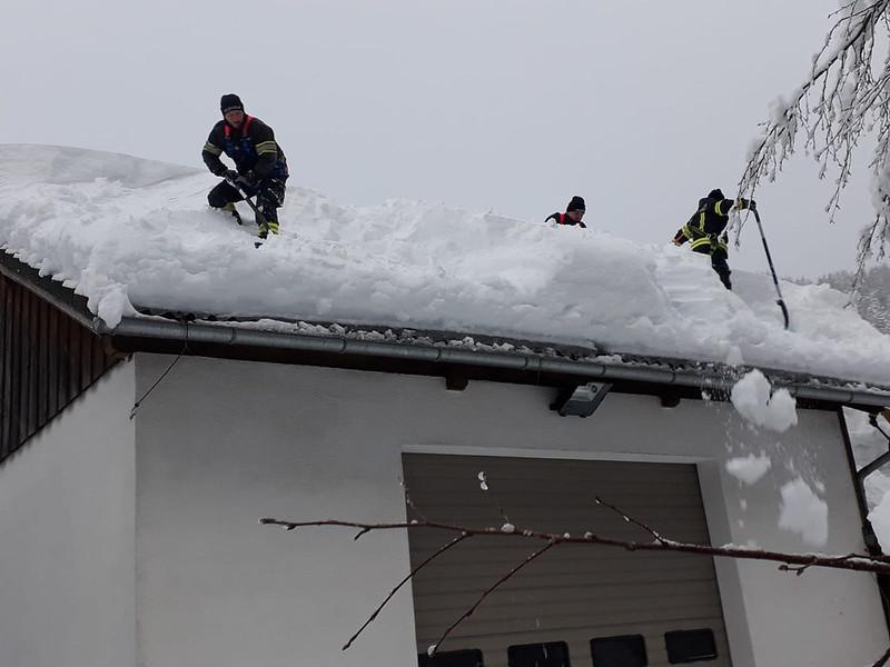 SchneedruckRosenau-2
