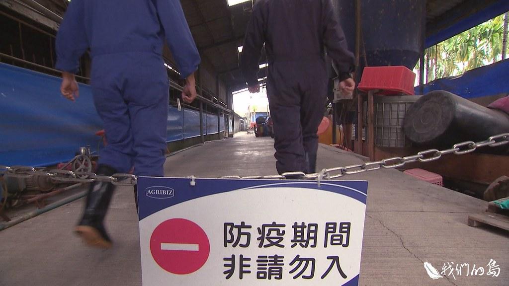 999-1- (19)為了防堵非洲豬瘟病毒隨中國肉品進入台灣,防疫人員日以繼夜,在海關、港口全力戒備。
