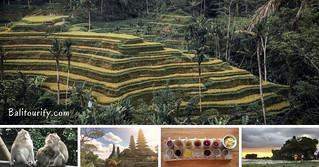 Ubud - Tanah Lot Tour | by Balitourify