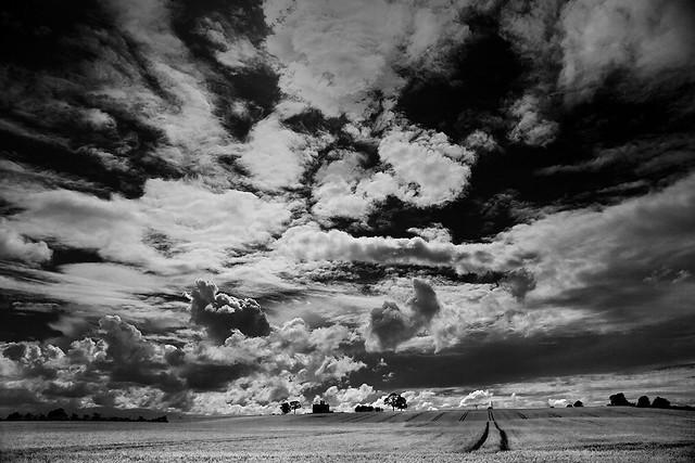 Big Sky, Rathcoffey.