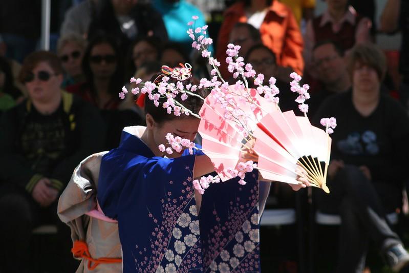 apr 7- cherry blossom festival5c5a1754ecba1