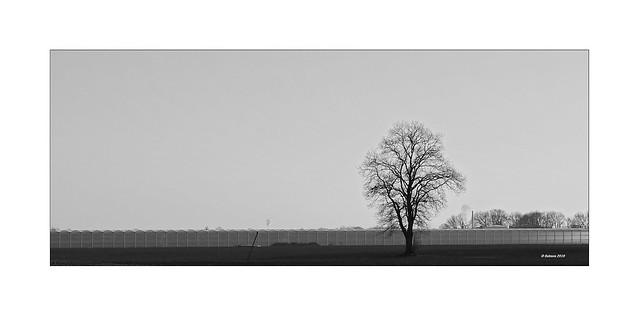 Gewächshaus XXL - Winterzeit