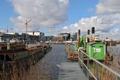 Minervahaven, Amsterdam