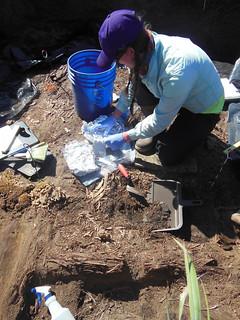 Katie Braymer sampling ceramics at Cape Espenberg   by Shelbylra