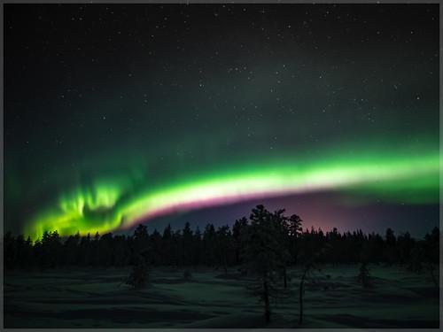 Aurora borealis_93041   by uwe_cani