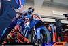Bezzecchi, Moto2, Grand Prix Of The Americas 2019