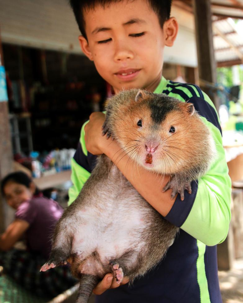Laos Travel_022