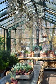 Tivoli Gardens | by Jodimichelle