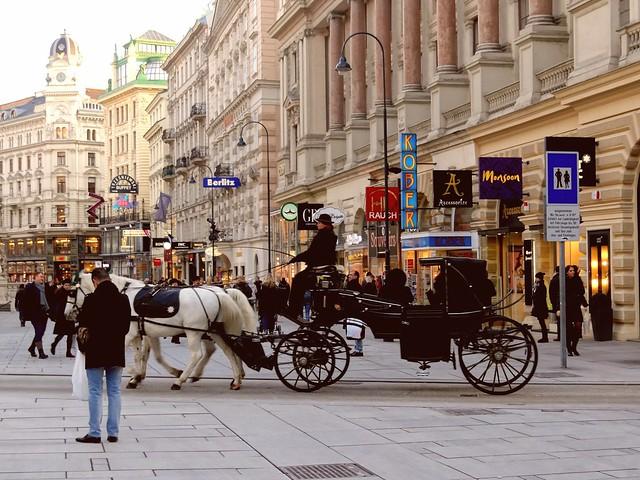 City Center Horse Carriage. Vienna, Austria