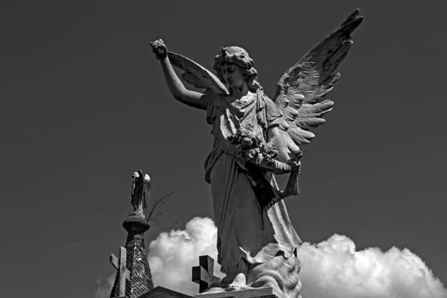 Angeles del Cementerio de la Recoleta