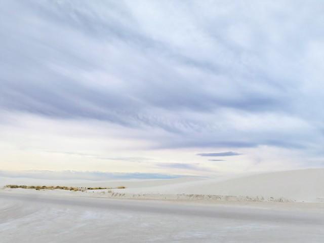 White Sands Study 2019