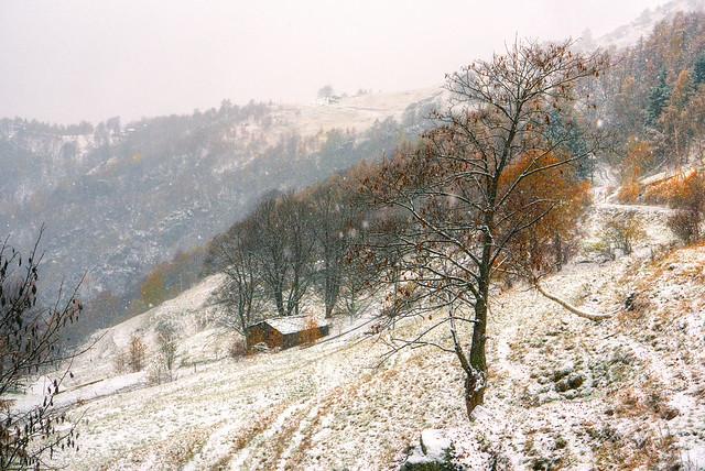 la prima neve ...
