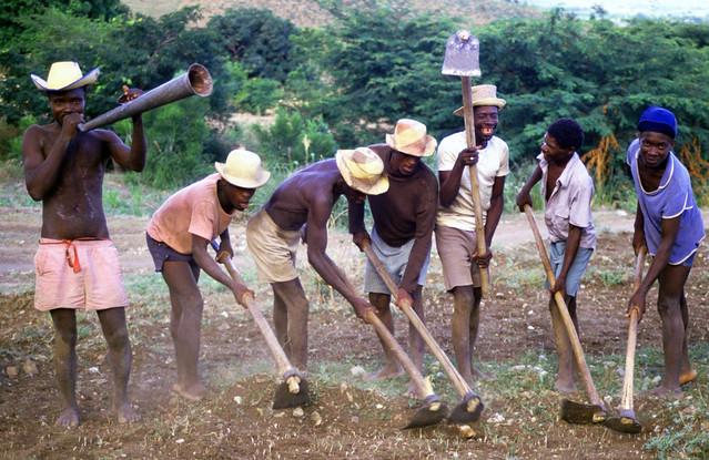 Rural konbit (farmers' work coop), Haiti.