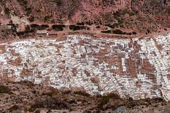 The Salt-Evaporation Ponds of Maras (Las Salineras de Maras), Ma