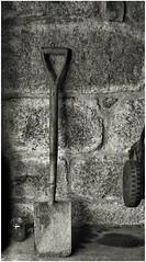 Spade, Nikon F2, Fomapan 100, Developed in Caffenol C-M