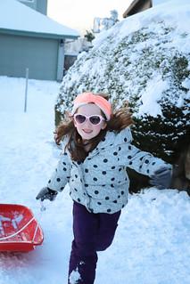 20190209 snowzilla-38 | by schnell foto