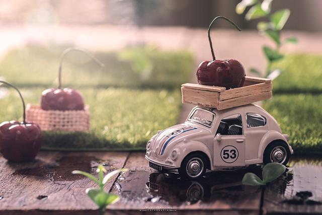 """""""Herbie"""""""