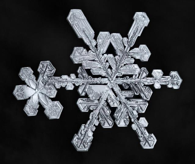 Snowflake-a-Day No. 58