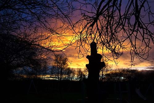 sun rise cullompton leat fields devon sunrise ipm