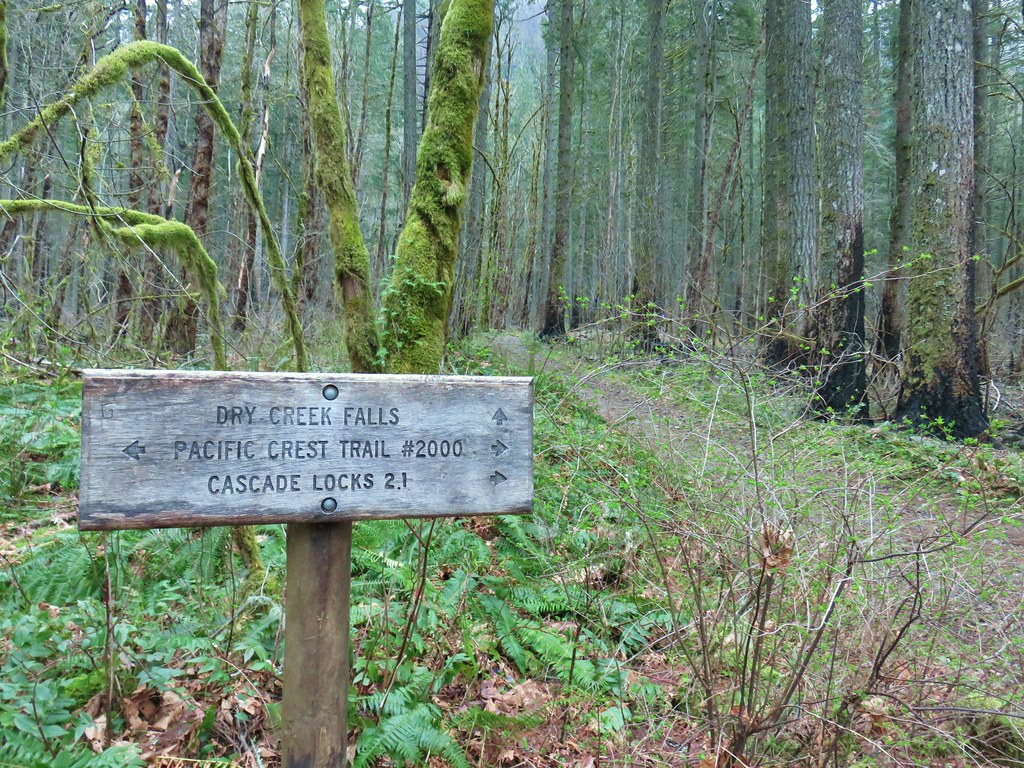 Dry Creek Falls Trail
