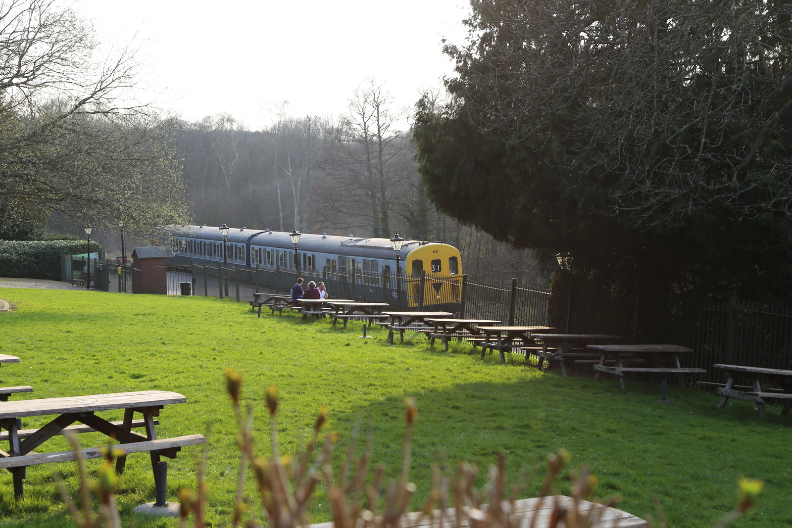 Spa Valley Railway train passing High Rocks