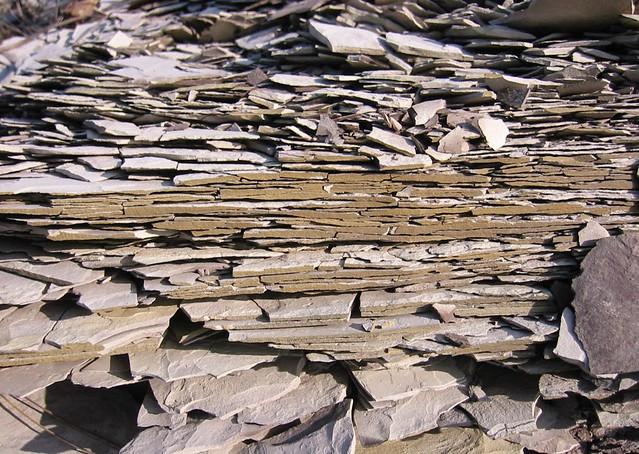 Diktüoneemakiltkivi fosforiidimaal / Phosphate rock mining area in Estonia