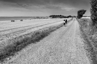 Walking girls | by geirchristensen