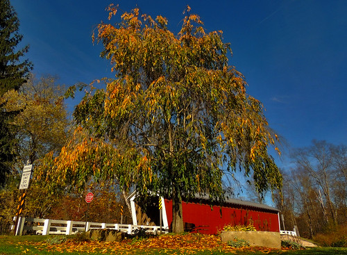 thomasford covered bridge indiana county pa pennsylvania scenic scenery landscapes transportation outside