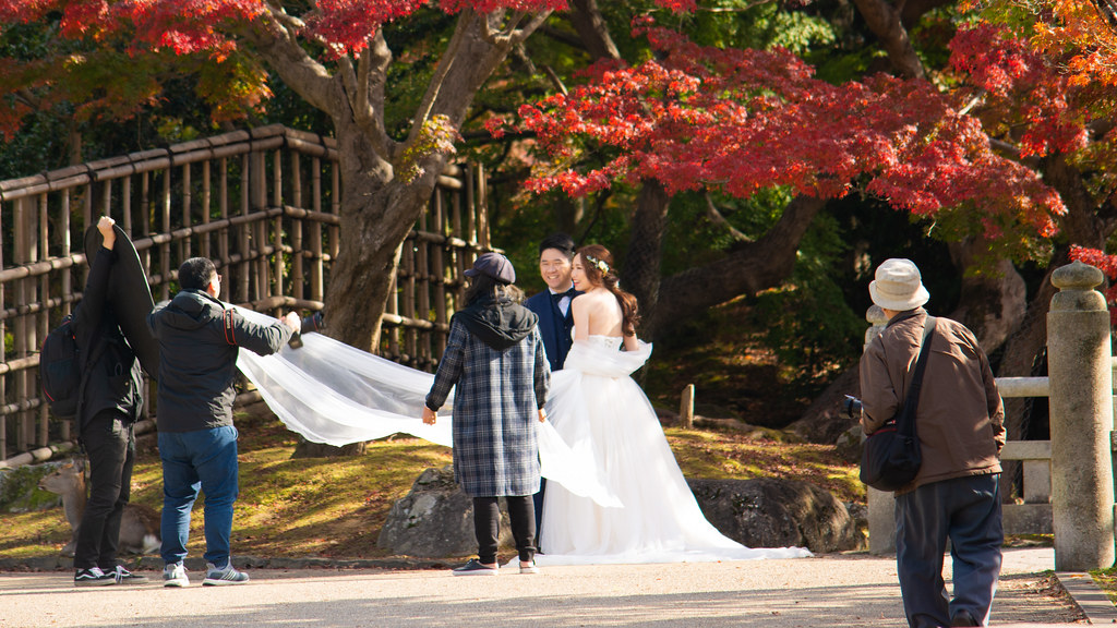 Wedding pictures in Nara among the fall foliage