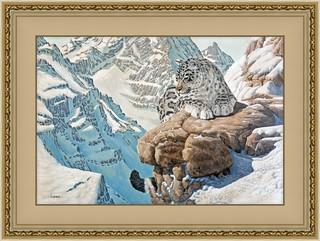 snow leopard framed