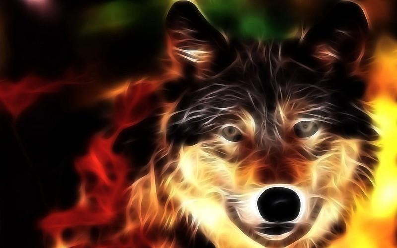 Обои волк, морда, свет, линии картинки на рабочий стол, фото скачать бесплатно
