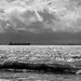 Ocean Shores Wa by Dogsday71