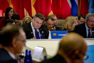 Lithuanian Foreign Minister Linkevicius Participates in th