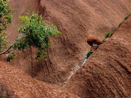 Uluru_49.jpg