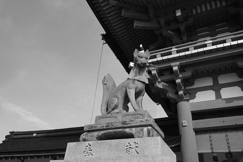 25-02-2019 Kyoto (52)