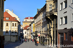 Viajefilos en Bratislava 094