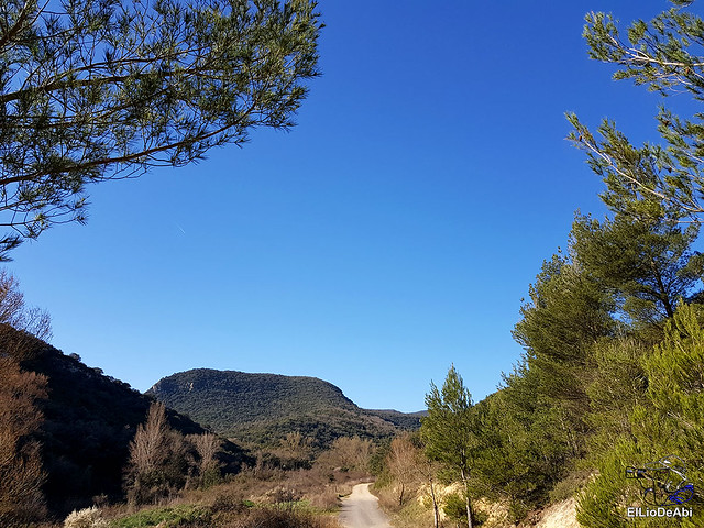 Por los montes de Herrera y el Yermo Camaldulense 3